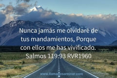 I will never forget your commandments, For with them you have made me alive. Psalms 119: 93 RVR1960