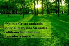 It is not Christ walking on the sea, but his daily walk, what we are called to imitate