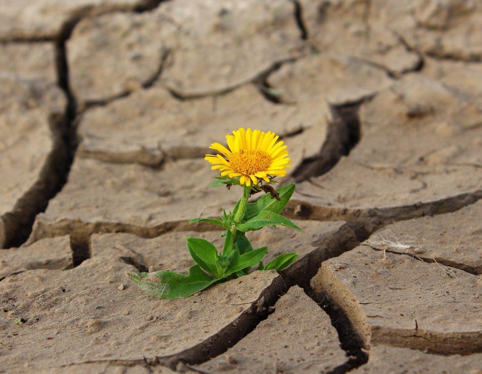 Oraciones para pedir prosperidad y derramamiento económico